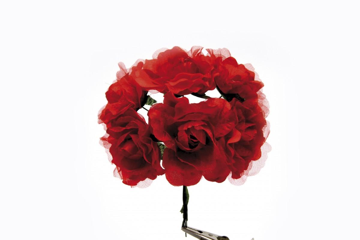18 Rose in Organza