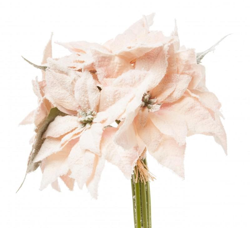 Mazzo Stelle di Natale cm 25 pz.7 Rosa cipria