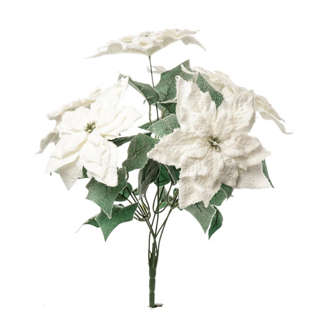 Bush Stelle di Natale innevate bianco