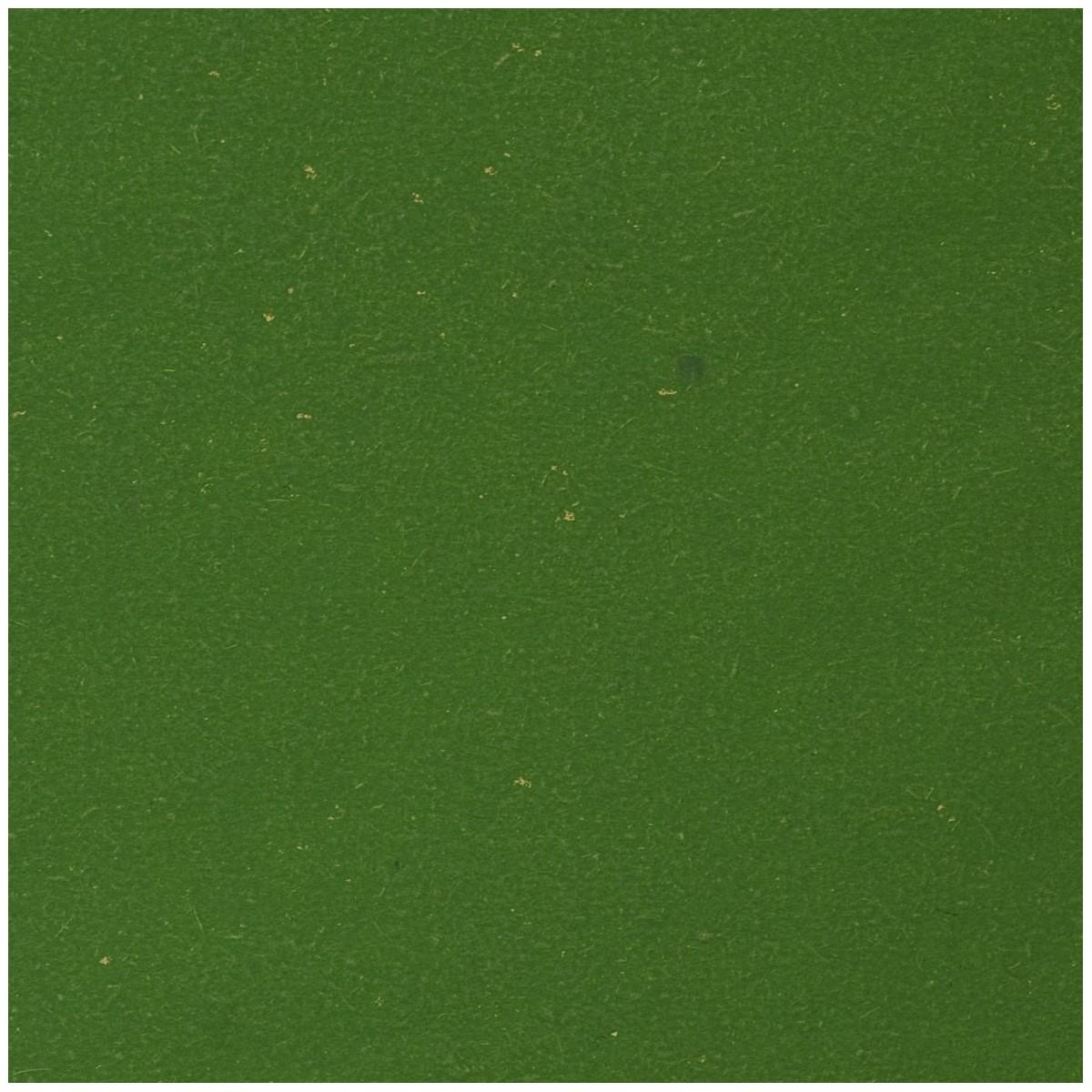 Carta Paglia ECOCHIC Gr.85 Fogli Cm.70x100 Colori Tinta Unita Verde Medio