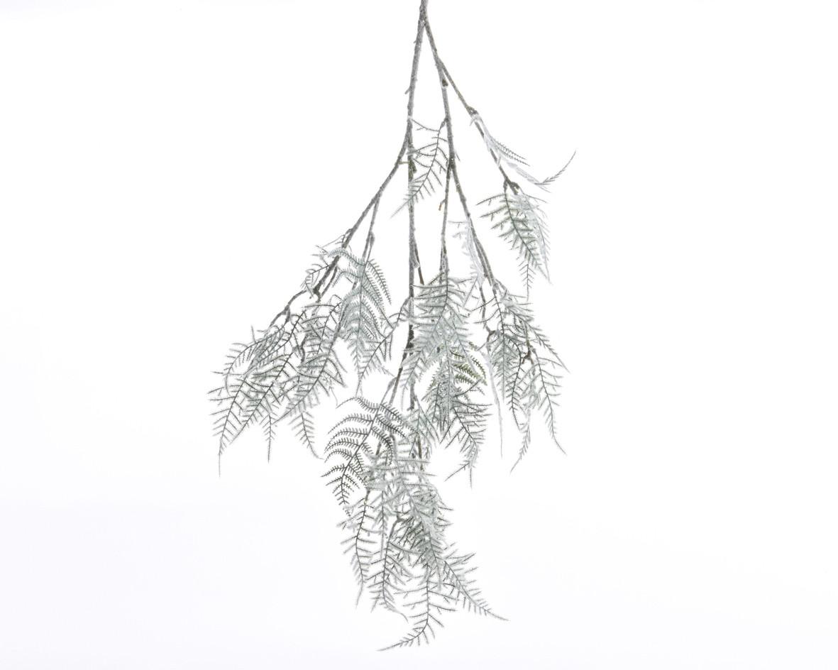 Filo Asparagus Branch Snow