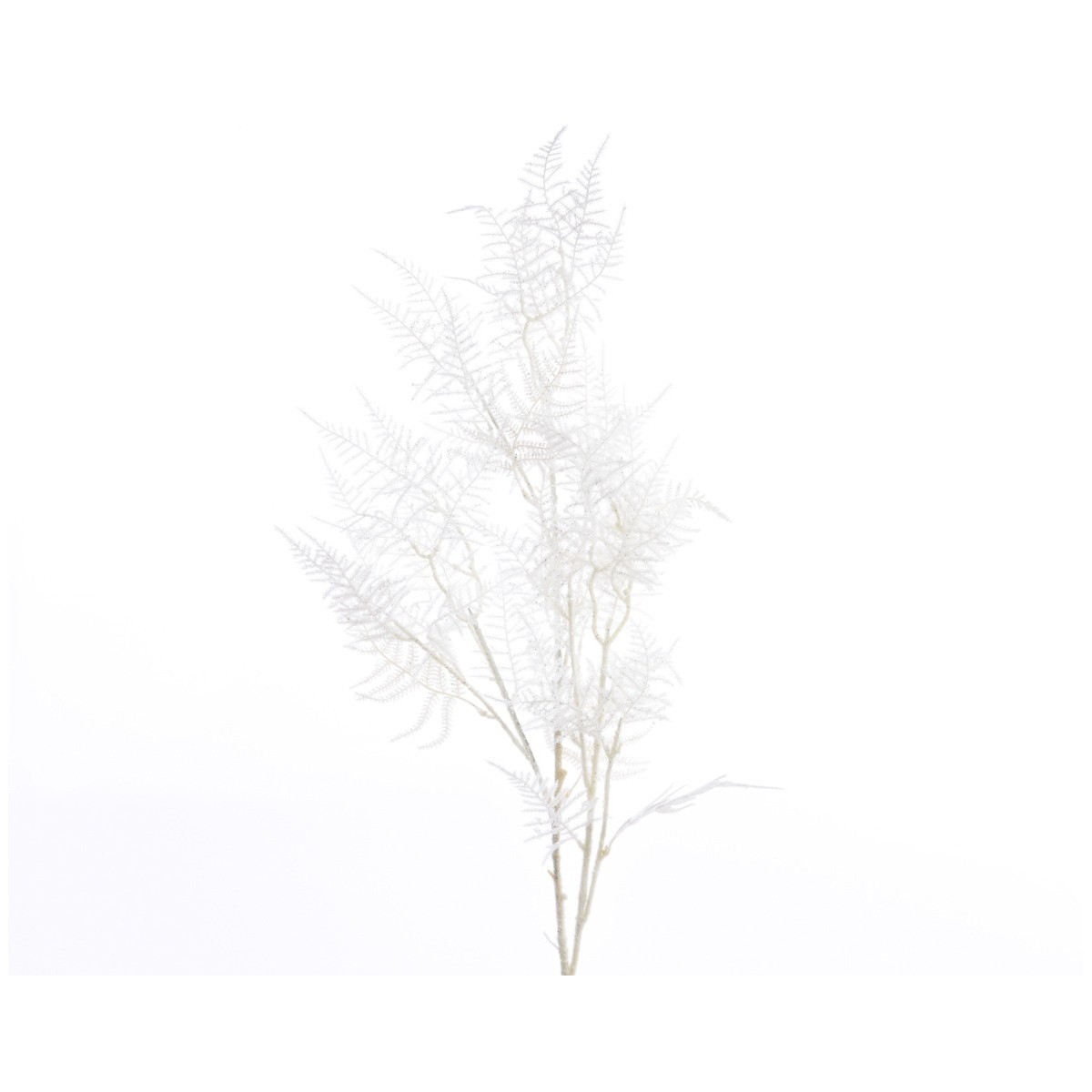 Filo Asparagus Branch Snow Bianco