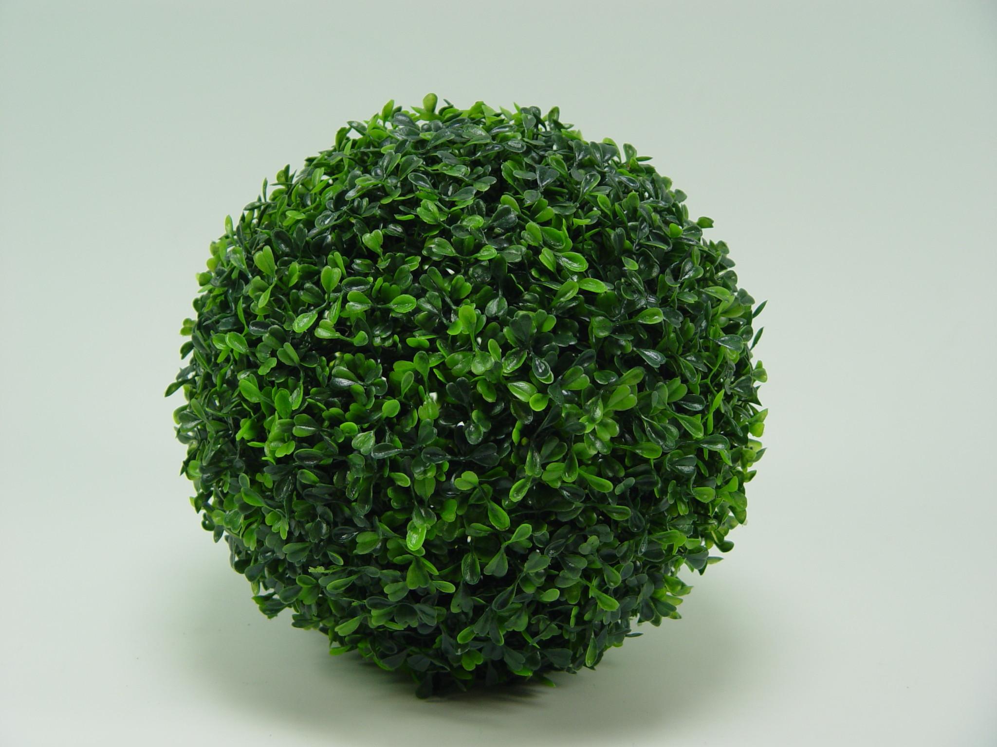Sfera Boxwood verde