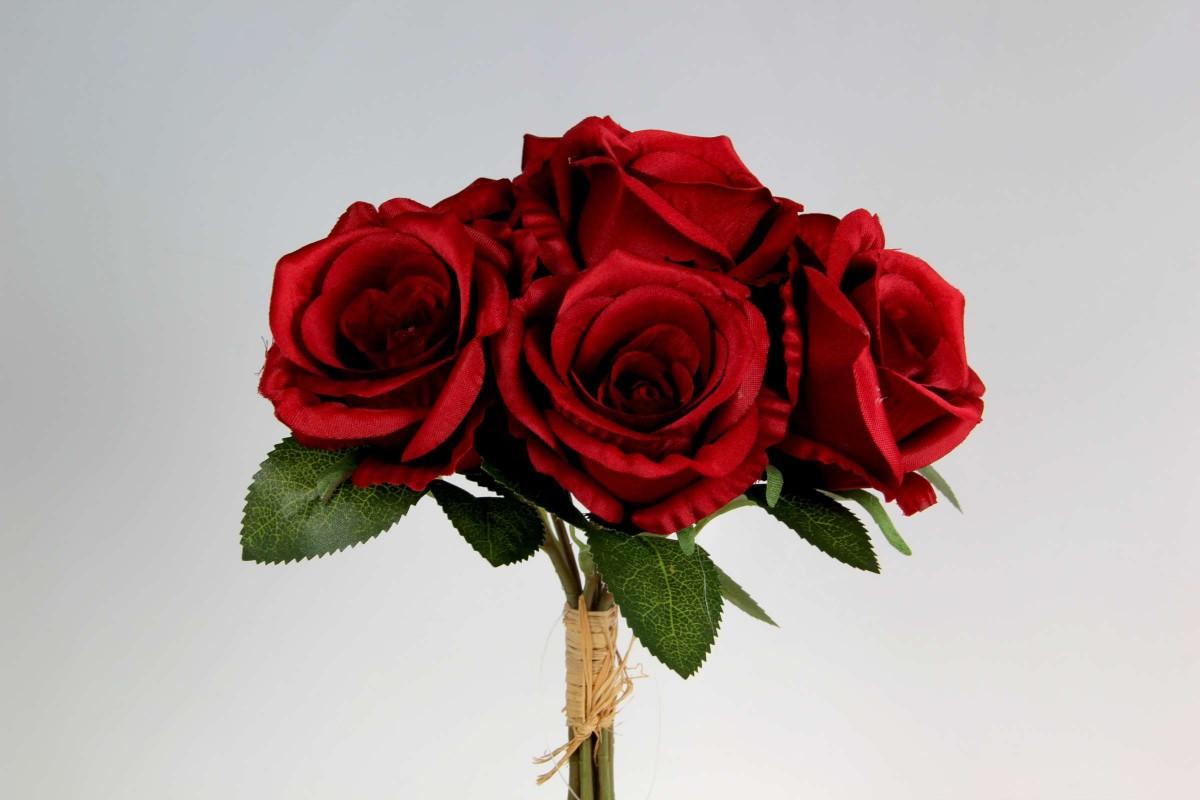 Bush Rosa Noelia x 7