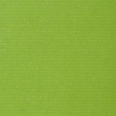 Carta Sealing Bianco ECOWHITE Gr.60 Fogli Cm.70x100 Colori Tinta Unita (al Kg.) Verde