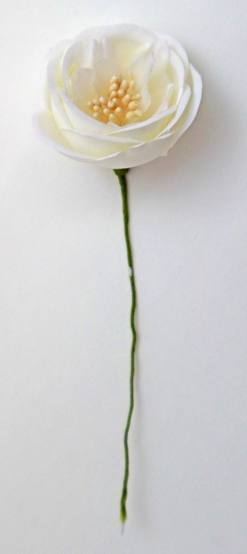 Ranuncolo cm 3,5 pz.72 crema