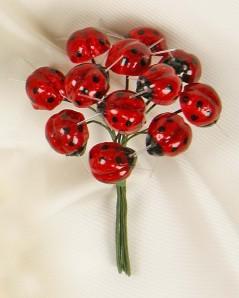Coccinelle rosse pz.144