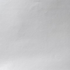 Carta Monopatinata Plastificata GLOSSYLUX  Gr.90 Fogli Cm.70x100 Colori Tinta Unita (al Kg.) Argento