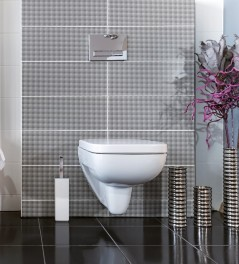 Detergente disincrostante per l'igiene del wc ml.750